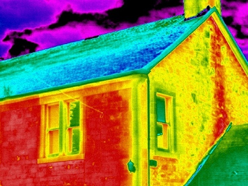 Thermal Image of Green House Insulation