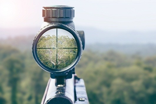scope number meanings