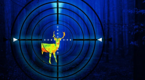 best crossbow scope for night hunting