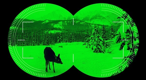 zeroing targets