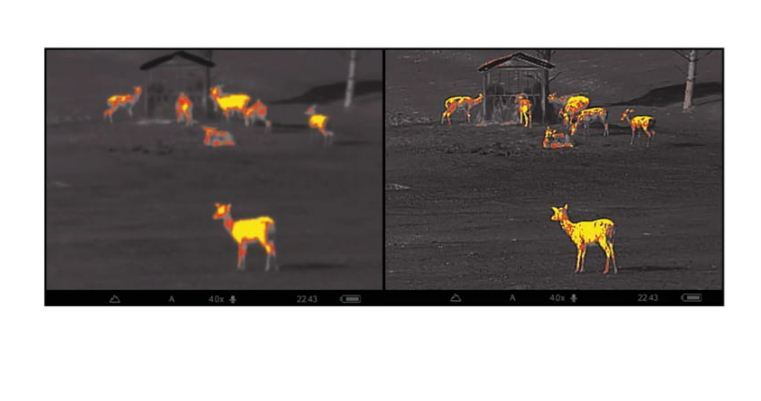 thermal imaging scope reviews